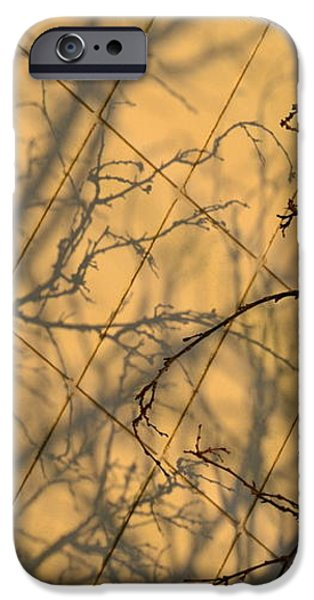 Automotive iPhone Cases - Confusion iPhone Case by Gustave Kurz