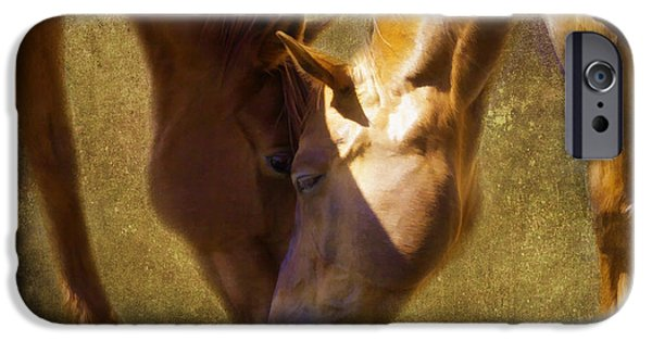 The Horse iPhone Cases - Connections iPhone Case by Jacque The Muse Photography