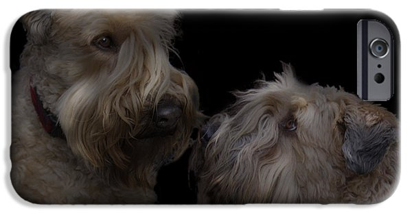 Recently Sold -  - Puppy Digital iPhone Cases - Conor and Bailey - Puppy love iPhone Case by Kevin Doty