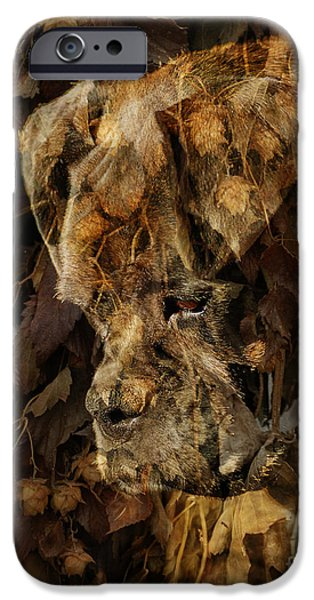 Boxer Dog iPhone Cases - Contemplation iPhone Case by Judy Wood