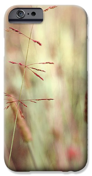 Plant iPhone Cases - Contrario - sp01 iPhone Case by Variance Collections