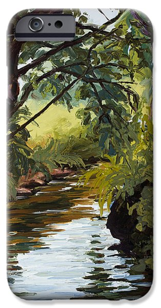 Pallet Knife Paintings iPhone Cases - Cool Diversion iPhone Case by Mary Giacomini