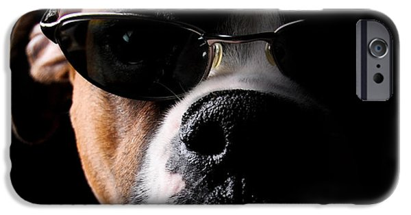 Boxer iPhone Cases - Cool Dog iPhone Case by Jt PhotoDesign