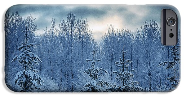 Winter iPhone Cases - Cool Sunrise iPhone Case by Joan Carroll
