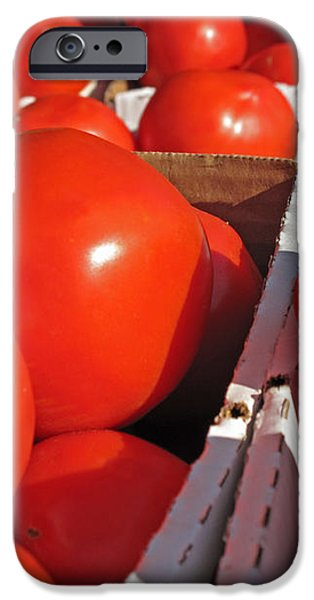 Cool Tomatoes iPhone Case by Barbara McDevitt