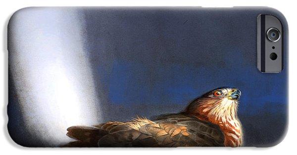 Bird Of Prey iPhone Cases - Coopers Hawk iPhone Case by Aaron Blaise