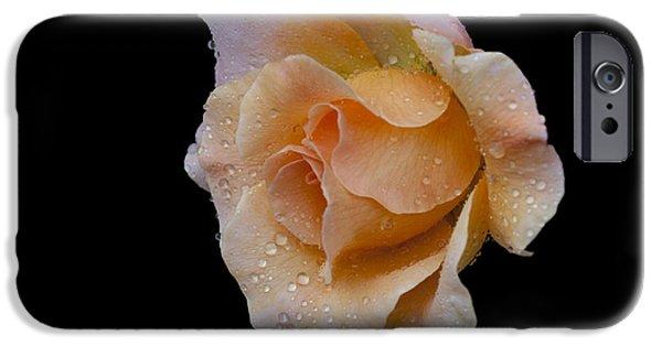 Floral Digital Art Digital Art iPhone Cases - Coral Cutie iPhone Case by Doug Norkum