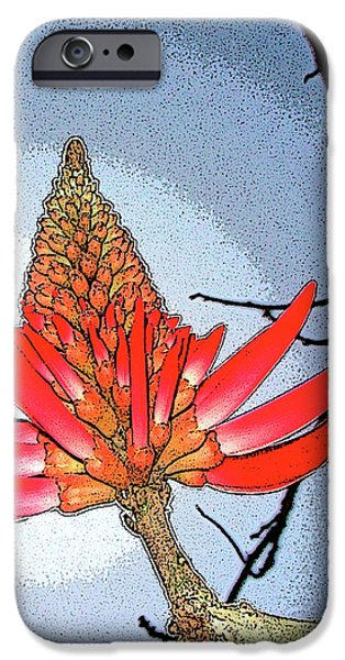 Coral Tree iPhone Case by Ben and Raisa Gertsberg