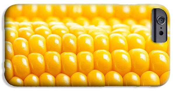 Sweet Corn Farm iPhone Cases - Corn background iPhone Case by Anna Omelchenko