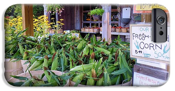 Farmstand iPhone Cases - Corn iPhone Case by Janice Drew