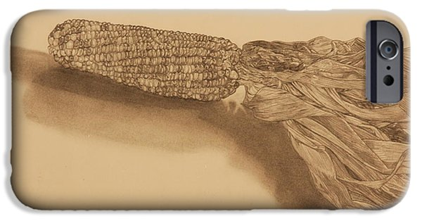 Crops Drawings iPhone Cases - Corn iPhone Case by Michelle Miron-Rebbe