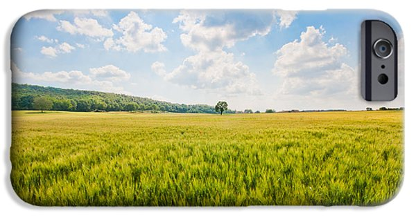 Tuscan Hills iPhone Cases - Cornfield in Tuscany iPhone Case by JR Photography