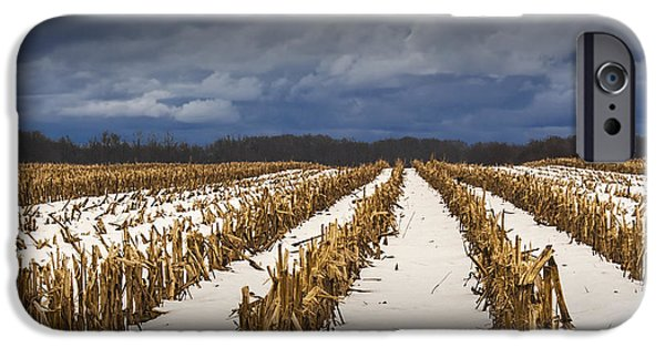 Winter Storm iPhone Cases - Cornfield Stalks after the Harvest in Winter iPhone Case by Randall Nyhof
