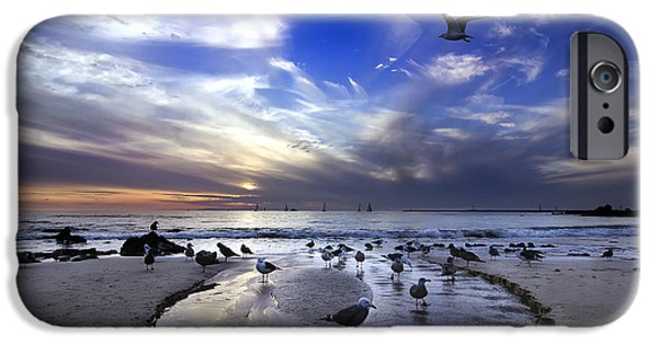 Flight iPhone Cases - Corona del Mar iPhone Case by Sean Foster