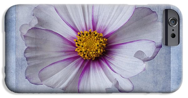 Cosmo iPhone Cases - Cosmos with textures iPhone Case by John Edwards
