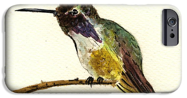 Cute Bird iPhone Cases - Costa s Hummingbird iPhone Case by Juan  Bosco