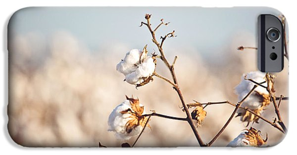 Arkansas iPhone Cases - Cotton Production iPhone Case by Scott Pellegrin