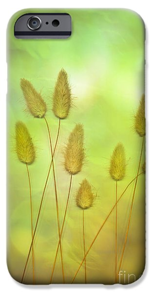Scanography iPhone Cases - Cottontails iPhone Case by Jan Bickerton