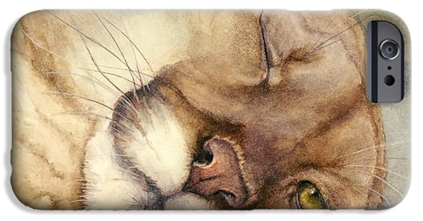 Wild Animals iPhone Cases - Cougar    I See You     iPhone Case by Bonnie Rinier