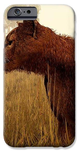 Cougar in a Field iPhone Case by Daniel Eskridge
