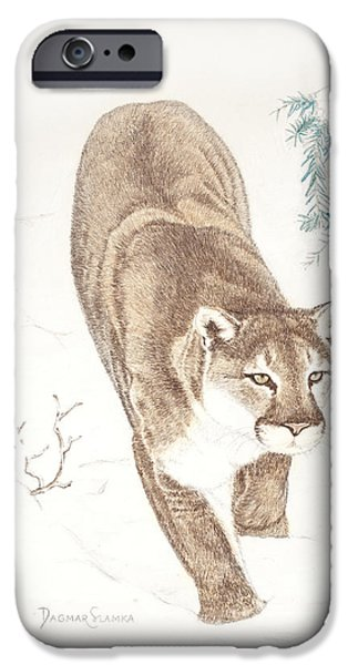 Beautiful Cat Drawings iPhone Cases - Cougar in snow iPhone Case by Dag Sla