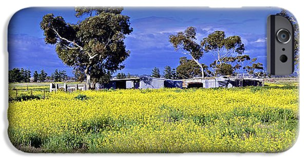 Shed iPhone Cases - Country Australia  iPhone Case by Damian Morphou
