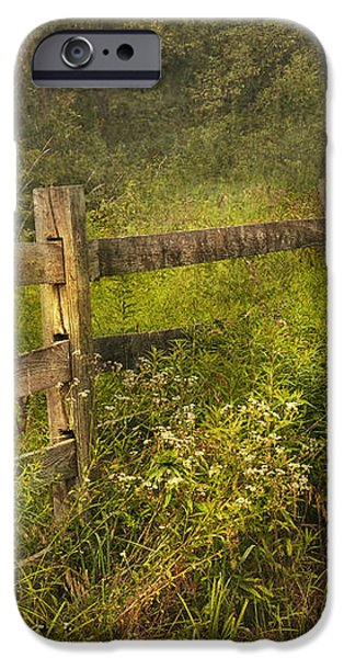 Country - Fence - County border  iPhone Case by Mike Savad