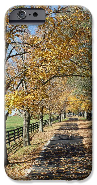 Country Lane iPhone Case by Roger Potts