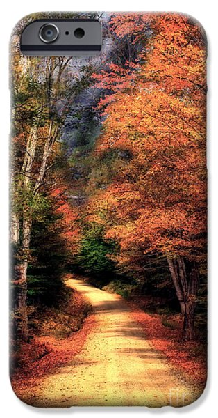 Country Road iPhone Case by Brenda Giasson
