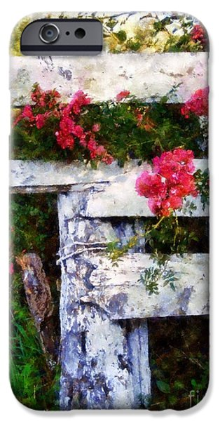 Old Fence Posts iPhone Cases - Country Rose on a fence 2 iPhone Case by Janine Riley