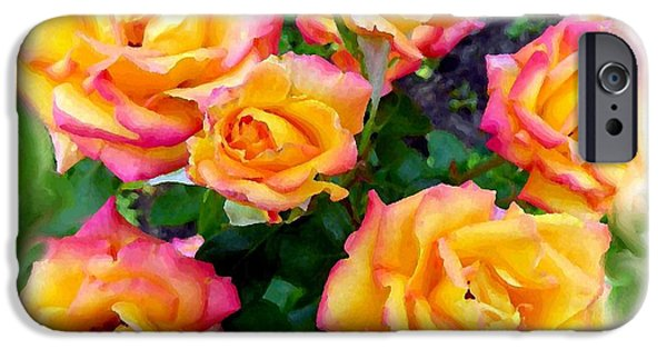 Floribunda iPhone Cases - Country Roses Watercolor iPhone Case by Will Borden
