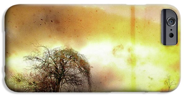 Nature Scene iPhone Cases - Country Tree iPhone Case by Gothicolors Donna Snyder