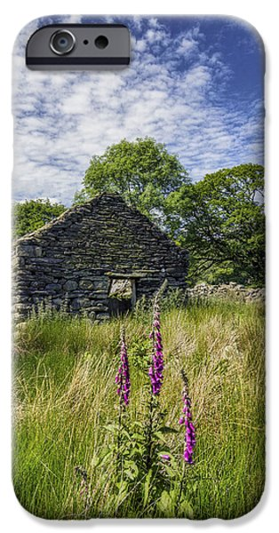 Foxglove Flowers Photographs iPhone Cases - Countryside Ruin iPhone Case by Ian Mitchell