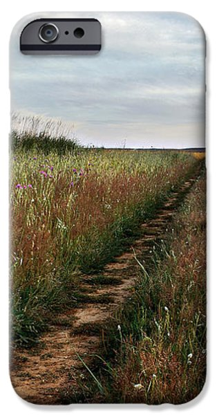 Countryside tracks iPhone Case by Carlos Caetano
