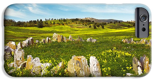 Agriculture iPhone Cases - Countryside with Stones iPhone Case by Carlos Caetano