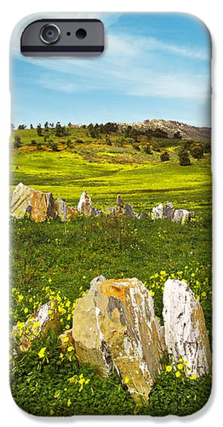 Countryside with Stones iPhone Case by Carlos Caetano