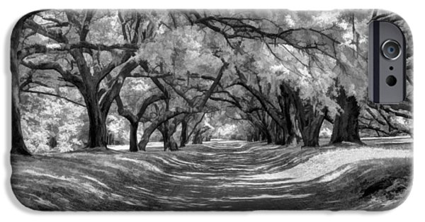 Historic Site iPhone Cases - Covered Passage iPhone Case by Dan Carmichael