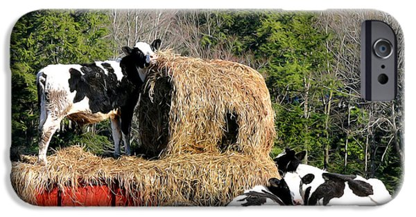 Bales Paintings iPhone Cases - Cow Country Buffet iPhone Case by Christina Rollo