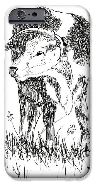 Cow in Pen and Ink iPhone Case by Rose Santuci-Sofranko