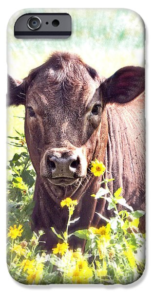 Cow In Wildflowers iPhone Case by Ella Kaye Dickey