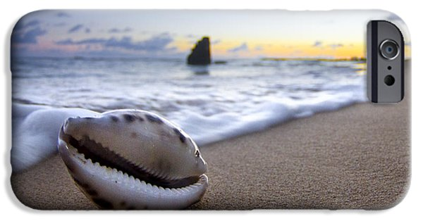 Sea iPhone Cases - Cowrie Sunrise iPhone Case by Sean Davey