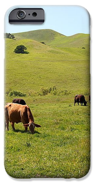 Cows Along The Rolling Hills Landscape of The Black Diamond Mines in Antioch California 5D22350 iPhone Case by Wingsdomain Art and Photography