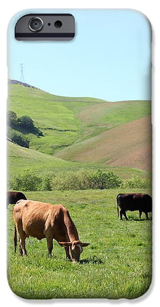 Cows Along The Rolling Hills Landscape of The Black Diamond Mines in Antioch California 5D22355 iPhone Case by Wingsdomain Art and Photography