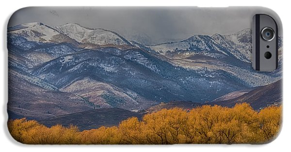 Inexpensive iPhone Cases - Cows Trees Mountains and Clouds iPhone Case by Paul Freidlund