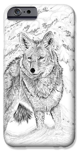 Wintertime Drawings iPhone Cases - Coyote iPhone Case by Carl Genovese