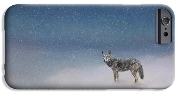 Coyote Art iPhone Cases - Coyote In Winter iPhone Case by Jai Johnson