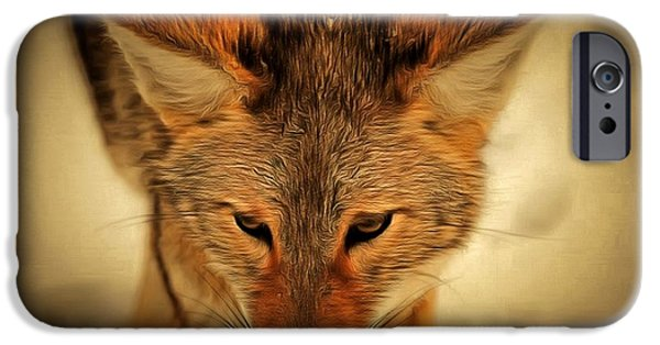 Levi iPhone Cases - Coyote iPhone Case by Levi Saunders