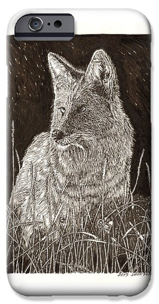 Coyote Art iPhone Cases - Coyote night hunting iPhone Case by Jack Pumphrey