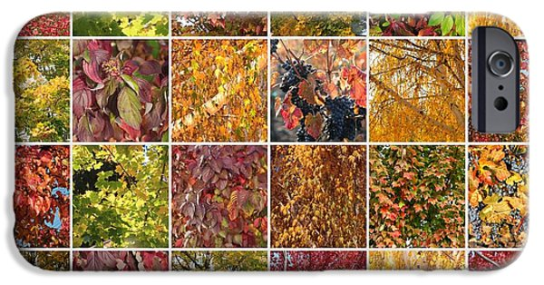 Colors Of Autumn iPhone Cases - Cozy Autumn Leaves Collage iPhone Case by Carol Groenen