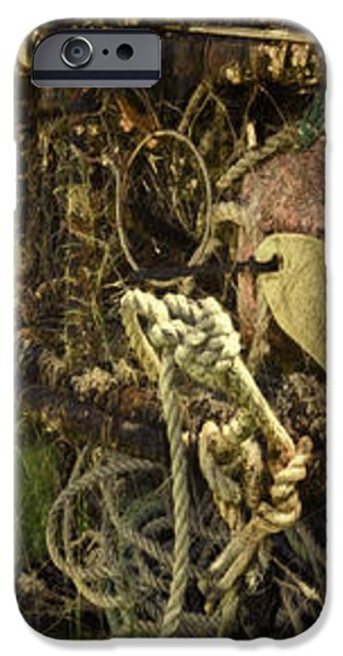 Basket iPhone Cases - Crabbing Relics iPhone Case by Jean OKeeffe Macro Abundance Art